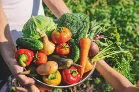 Día de la Gastronomía Sostenible: tema, historia y trascendencia